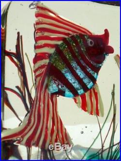 ALFREDO BARBINI aquarium Murano glass Cenedese midcentury 50s acquario